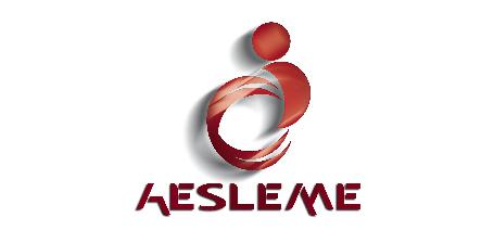 aesley-01-01